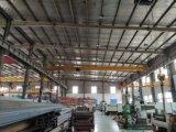Trust Worthy Bridge Eot Cranes with Best Overhead Crane Price