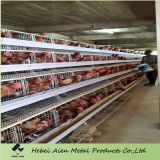 Best Price Automatic Broiler Chicken Cage for Sale