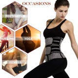 Wholesale Double Belted Fitness Neoprene Waist Trainer Weist Belt