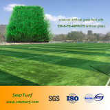 Football Synthetic Turf, Soccer Artificial Grass, Fake Grass, Artificial Lawn, Better Feeling, Good Quality, Competitive Price