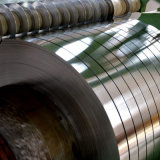 0.13~0.60mm Tinplate Steel Sheet Coil Strip for Tin Cans