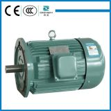 Y Series Best Price Good Quanlity Three Phase Electrical AC Induction Motor Made In China