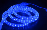 Blue Color 3 Wire LED Flat Rope Light for Decoration