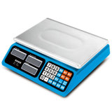 Electronic Price Computing Weighing Business Scale (DH~686)