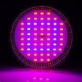 Hydroponic Grow Lights 21W LED Plant Grow Bulb Light