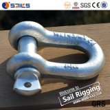 Rigging Galvanized Straight Pin D Shape Shackle