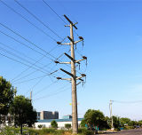 110 Kv Power Transmission Pole with Double Circuit
