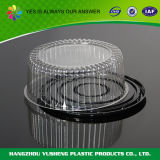 Customized 11inch Black Base Clear Lid Cake Dome