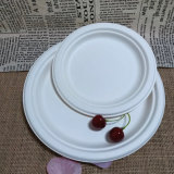 Disposable Hot Food Platter Compostable Wheat Straw Dinner Plate
