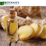Factory Wholesale Price Essential Oil Organic Ginger Aroma Diffuse Essential Oil for Health Care and Skin Care