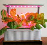 Smart Big Plant Hydroponic Planter W LED Plant Grow Light
