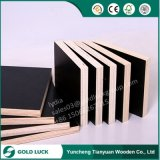 15mm 18mm Mr Laminated Cheap Marine Plywood 4X8 for Construction Concrete Use