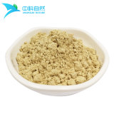 Black Soybean Extract Powder for Health Food