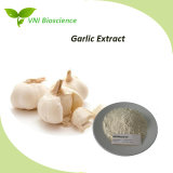 ISO SGS Certified 1%-5% Allicin/Alliin Powder Garlic Plant Extract