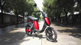 En-15194 City Coo (1510) Suspension Fork Cheap Motorcycle Electric Bicycle