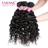 New Grade 5A Curly Brazilian Virgin Hair Weft