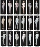 High Quality Mannequins with Good Price 09054