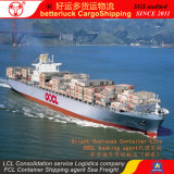 FCL Container Shipping from Guangzhou to Sokhna Egypt Cargo Agent