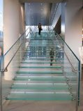 New Design DOT Tempered Laminated Safety Glass Floor