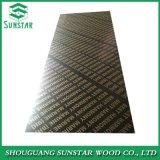 Ffp Poplar/Hardwood/Finger Joint/Bamboo Black/Brown/Red/Green/Anti-Slip/Waterproof Film Faced Marine Plywood Sheet