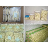 Shandong Peeled Garlic for Exporting