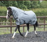 1200d, 1680d Poly, 1680nylon Winter Horse Rug (CB-30)