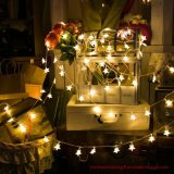 LED Star Light String Battery Small Lights Web Celebrity String Lights Christmas Room Curtain Lights Ins Decorative Lights