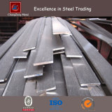 304 Hot Rolled Stainless Flat Metal Bar (CZ-F47)