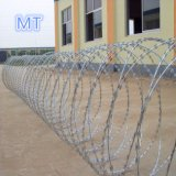Stainless Steel Barbed Razor Wire Cbt-65 Carton Box Packing