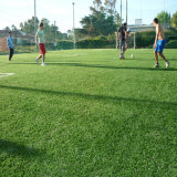 Best Quality Cheap Soccer Sport Artificial Turf