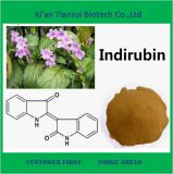 Top quality Folium Isatidis Plant Extract 4: 1 5: 1 10: 1 20: 1