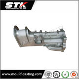 Customized OEM Aluminum Casting Auto Parts with Painting Finish