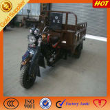 Three Wheeler Motorzied Cargo for South Asia
