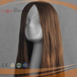 100% Brazilian Hair Front Lace Top Wig (PPG-l-014781)