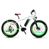 Aluminium Fat Tire Electric Mountain Beach Bicycle with Ce En15194 Bike