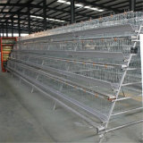 High Quality Direct From Factory Steel Structure Big Chicken Farm