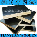 18mm Shuttering Marine Plywood Sheets Prices