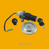 Reliable Motorbike Main Switch, Motorcycle Main Switch for Hq1004