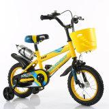 Carton Price Children Bicycle/Kids Bike for 10 Years Old
