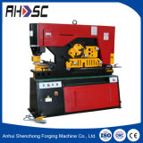 Hydraulic Hole Punching Machine with Double Head/Channel Steel Cutting Machine