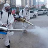 Portable Thermal Fogger Machine Home and Garden Sprayer Butane Garden Lawn Insect Pest Bug Hospital Home School Anti Virus