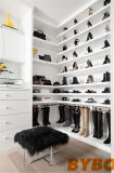 Long and Narrow Walk in Closet with Purse Shelves (BY-W-27)