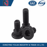 Hexagon Socket Head Shoulder Screw for Fasteners China Manufacturer
