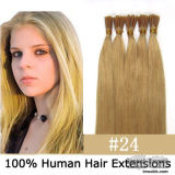 Full Human Hair Virgin Top Selling Hair Extension (PPG-L-09696)