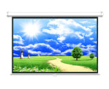 Competitive Price Manual Pull Down Projector Screen for Home&Office