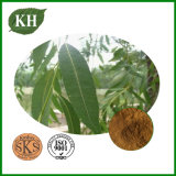 Top Grade White Willow Bark Extract Salicin 15% ~98%
