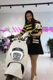 800W Hot Sale Electric Motorcycle with Brushless Motor