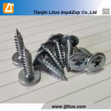 Zinc Phillips Modified Truss Head Self Tapping Screw