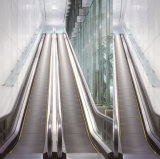 Syney Cheap Price Advanced Technology Moving Walkway for Shopping Center