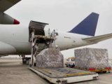 Air Shipping Cargo Agent From China to Matrouh Best Shipping Agent Service